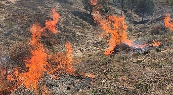 Prescribed burn planned on the Verde Ranger District photo