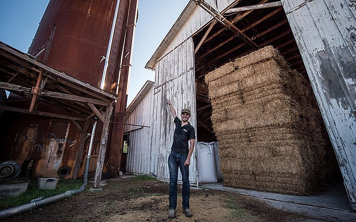 Yann Raymond of Sinagua Malt House in Camp Verde points to the silo that holds barley for processing into malt barley, which is used to make beer. The malt house, which began operation in 2016, is a collaboration by Verde Valley farmers, the Nature Conservancy and entrepreneur Chip Norton. (Photo by Jordan Evans/Cronkite News)