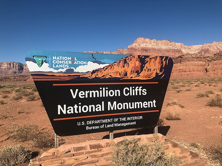 Since 1996 the Peregrine Fund has been releasing captive raised California condors into the wild at the Vermilion Cliffs in Northern Arizona. (Courtesy)