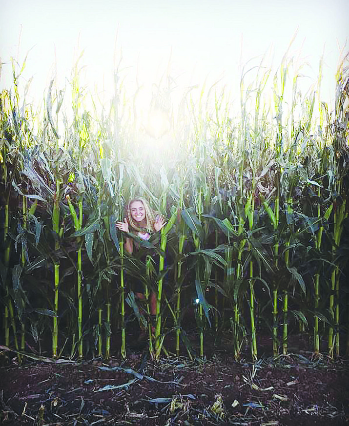 The size of Mortimer Farms' corn maze towers over anyone. (Mortimer Farms/Courtesy, file)