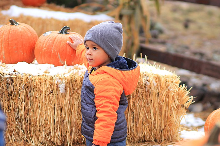 A young pumpkin seeker braves the cold after riding the Grand Canyon Railway's Pumpkin Patch Train.