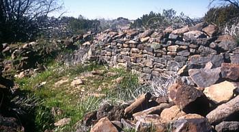 Amazing Places: Brooklyn Rim, Ruins & Petroglyphs revised photo