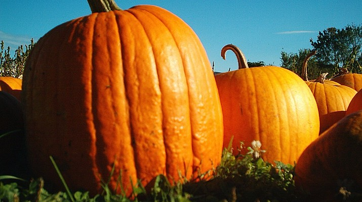 Have a pumpkin party at the library
