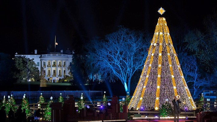 The National Christmas Tree at President's Park in Washington D.C. (Photo/NPS)