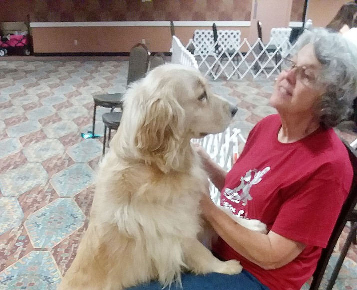 Stella, a very loving golden retriever, is one of the lucky ones, sharing an incredible bond with her person, Patricia Schwarz. (Courtesy)