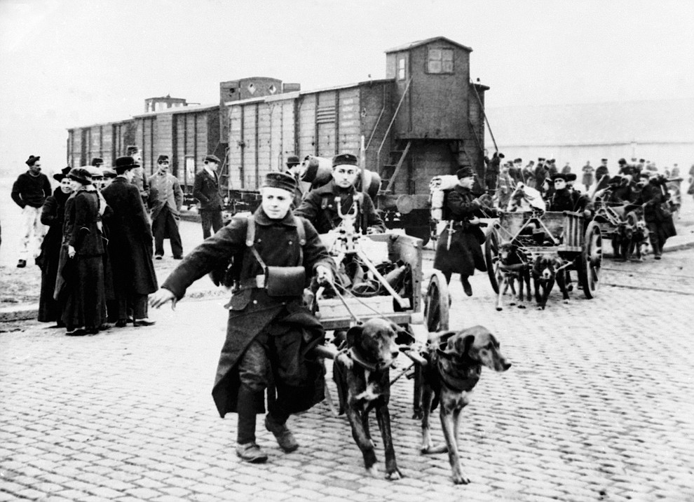 FILE - In this undated WWI file photo, soldiers move toward the front with their machine guns and ammunition pulled by dogs in Belgium. They were messengers, spies, sentinels and the heavy haulers of World War I, carrying supplies, munitions and food and leading cavalry charges. The horses, mules, dogs and pigeons were a vital part of the Allied war machine, saving countless lives _ and dying by the millions. (AP Photo, File)