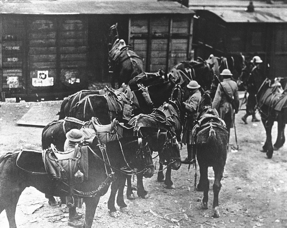 FILE - In this March 7, 1918 file photo, men of U.S. Battery E, 5th Field Artillery Battalion, 1st Infantry Division, load horses onto freight cars in Toul, eastern France, en route to the French front. They were messengers, spies, sentinels and the heavy haulers of World War I, carrying supplies, munitions and food and leading cavalry charges. The horses, mules, dogs and pigeons were a vital part of the Allied war machine, saving countless lives _ and dying by the millions. (AP Photo, File)