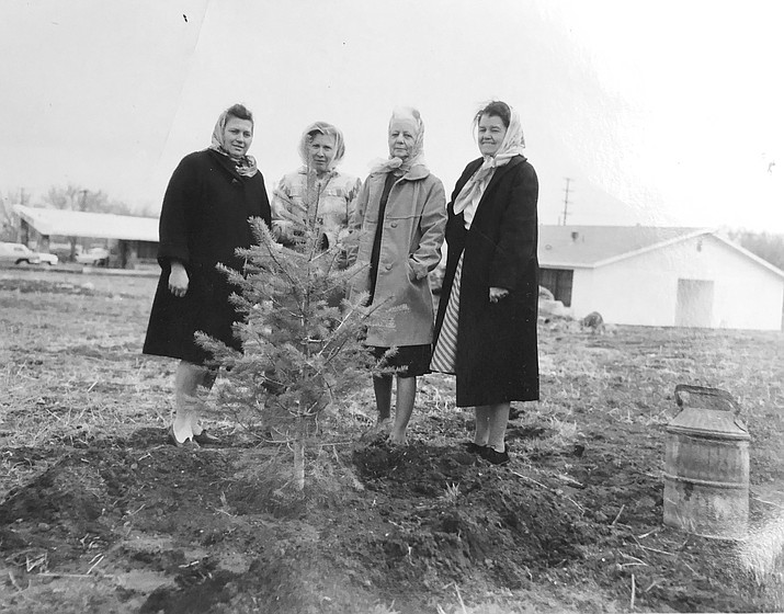 The Ladies' Garden Club plants a tree in front of the Williams Hospital circa 1950. The woman on the left is Miriam Bowdon. (Harriet Bowdon/photo)