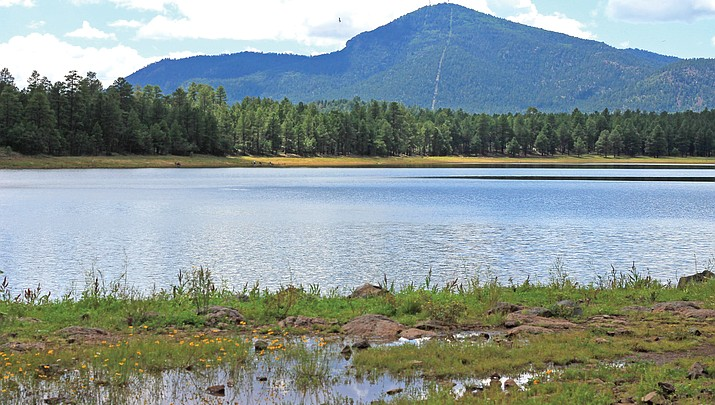 Aging water lines from Dogtown Lake to be replaced