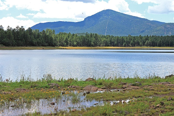 Aging pipelines will move into their first phase of updates following the approval of a $2.5 million loan to replace the Dogtown water line. (Wendy Howell/WGCN)