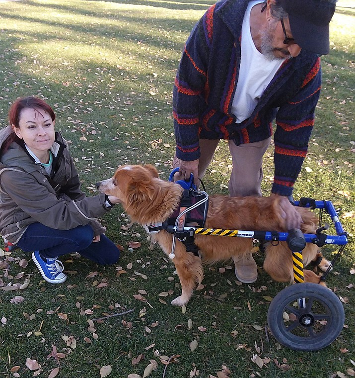 Thomas makes final adjustments to Chica's wheelchair before beginning their walks around the Courthouse Square, accompanied by his daughter, Jennifer Pinney, who refers to the cart as Chica's chariot. (Christy Powers/Courtesy)