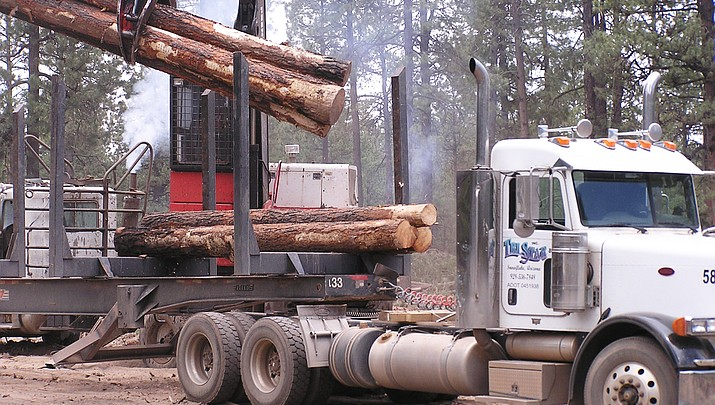 Forest Service responds to criticism about logging of old growth trees near Pinetop