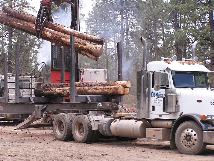 Cutting and logging activity can be seen on the 4FRI Ranch Task Order on the Apache-Sitgreaves National Forest. (Photo/USFS Apache-Sitgreaves National Forests)