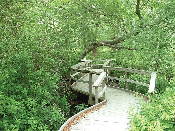 Red Maple Swamp Trail has reopened at Cape Cod National Seashore. (Photo/NPS)