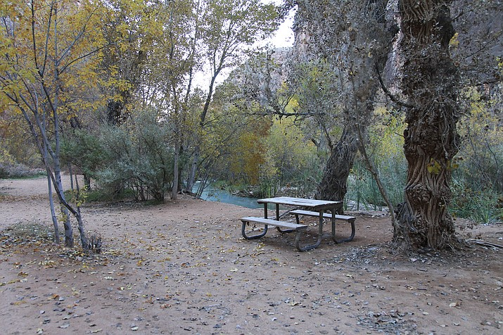 There are 300 campsites at Havasupai Campground. The tribe will begin taking reservations Feb. 1. (Loretta Yerian/WGCN)