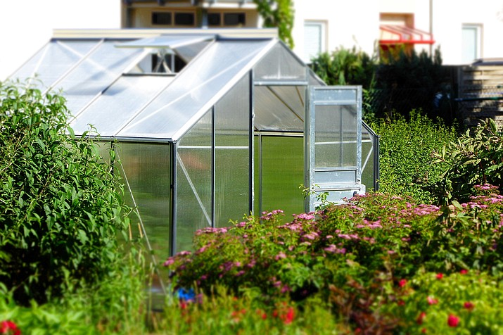 There are several things to check off your list with your greenhouse as we approach the end of the year. (Courtesy)