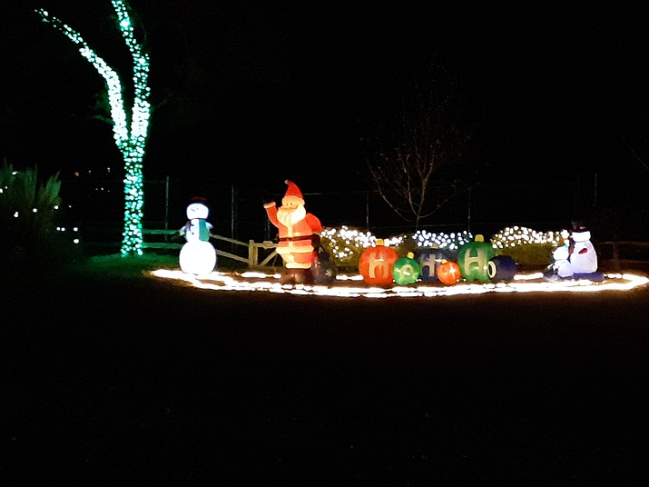Lights the public can see at Wildlights and Animal Sights, an event with only two weekends left until it ends. (Ron Brashear/Courtesy)