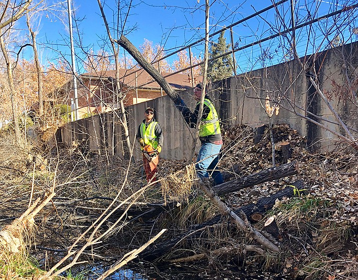 Kyle Littleton, left, and Tristan O'Neill of the TerraSole landscaping firm work to remove non-native trees along Granite Creek Wednesday, Dec. 19. The two were among the workers who local firms TerraSole and Prescott Landscape Professionals volunteered to help with the City of Prescott project near Goodwin Street. (Cindy Barks/Courier)