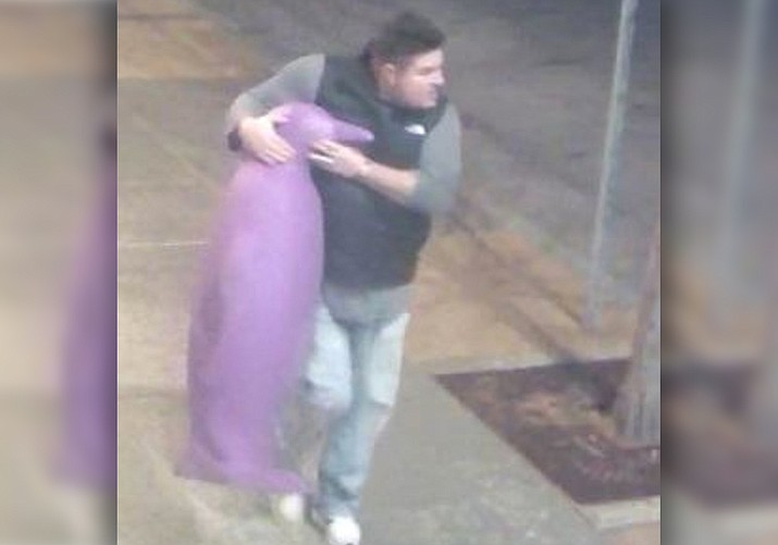 Oklahoma City police on Friday announced that a large purple penguin statue that was stolen from a hotel managed to waddle back home after police released surveillance camera images of a man with the $3,000 piece of art tucked under his arm. (Oklahoma City Police Department)
