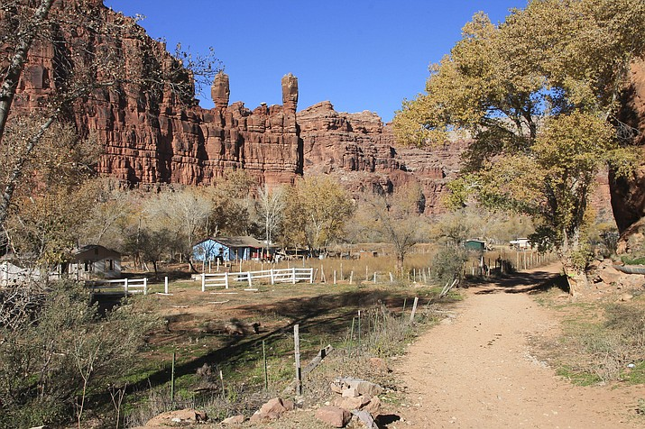 Supai Village is tucked into Grand Canyon's western rim and is home to the Havasupai Nation. (Loretta Yerian/WGCN)