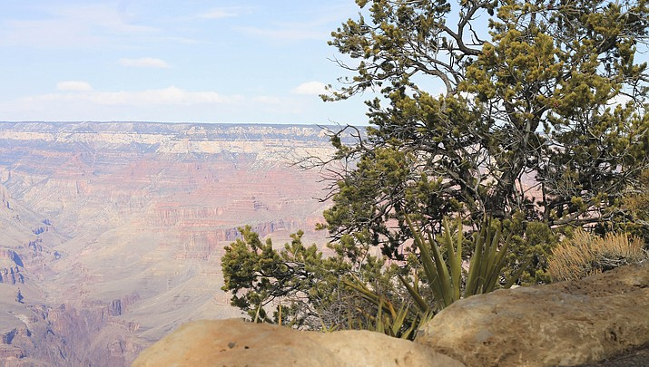 Grand Canyon, other parks to be reimbursed for funds spent in shutdown