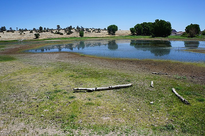 The low level of Willow Lake is especially visible in the cove along Willow Creek Road in northeast Prescott, in this June 2018 photo. With recent record-low precipitation, Willow Lake had dropped to 8.6 feet below the dam's spillway. (Cindy Barks/Courier)