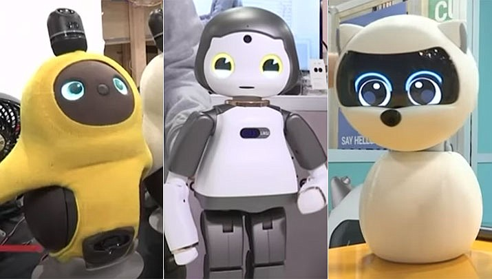 Robot makers are showcasing several sociable robots at Las Vegas CES 2019 gadget show.
