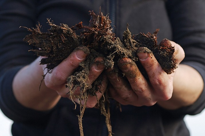 Mulch and manure additives ensure proper drainage, root growth, and water retention for successful garden growth. (Courier stock photo)