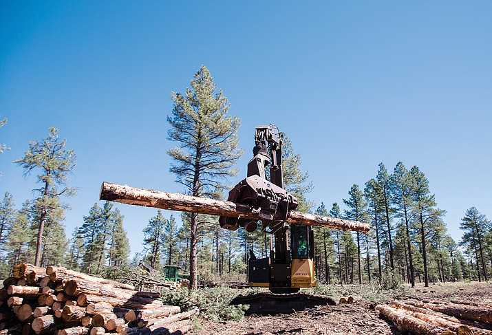 A tree delimber is used on a timber sale in Kaibab National Forest in 2015. Biomass such as tree branches, tree tops and pine needles are creating a bottleneck for forest thinning operations across the state.  (Ryan Williams/WGCN)