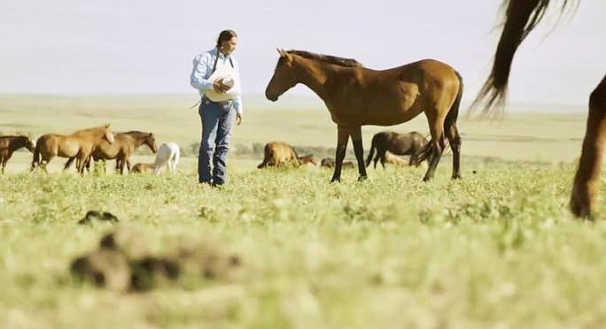 Moses Brings Plenty is the CANA Native Rangelands Director from the Cheyenne River Lakota Sioux Tribe in South Dakota investigating wild horse populations. (Photo/Indian Country Today)