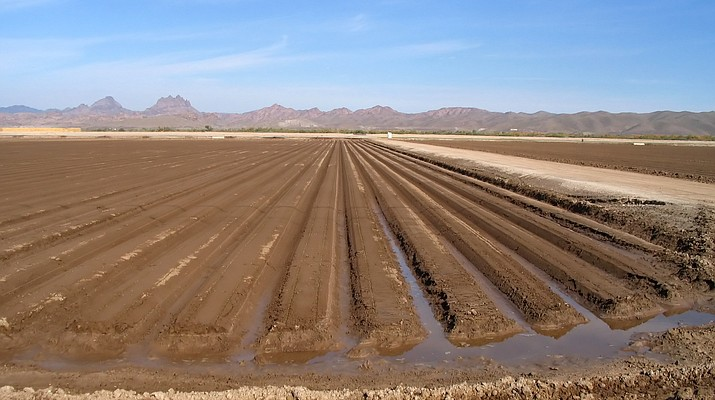 Attorney: Farmers 'stealing water' from Gila River tribe