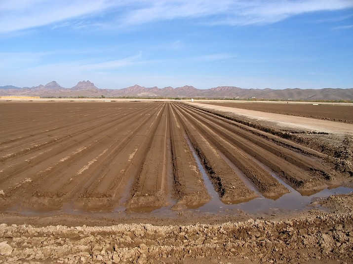 The Gila River Indian Community is threatening to blow up the drought contingency plan because of efforts it says will undermine its claim to water rights. House Speaker Rusty Bowers is proposing changes to state laws in a way he said will protect the rights of farmers in the Safford Valley. (Courier stock photo)
