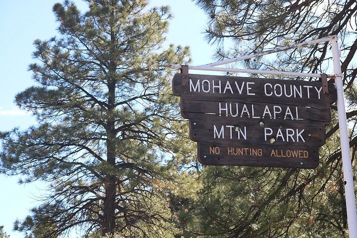 The burning will take place near the community of Pine Lake and Hualapai Mountain Park in February when weather conditions allow. (Photo by Travis Rains/Daily Miner)