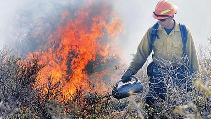 Area fire managers are planning prescribed burns on the Prescott National Forest, pending favorable weather conditions. (Courier, file)