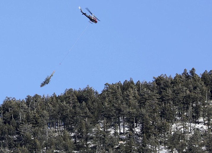 In this Jan. 30, 2019, photo a helicopter carries felled trees off the slopes of Mount Elden during helicopter logging operations for the Flagstaff Watershed Protection Project in Flagstaff, Ariz. Helicopter flights over Flagstaff are common, particularly with the local hospital being northern Arizona's only Level One trauma center, but the cargo of some of the helicopters buzzing over and around Flagstaff these days consists of logs, not people. (Courtesy Jake Bacon/Arizona Daily Sun)