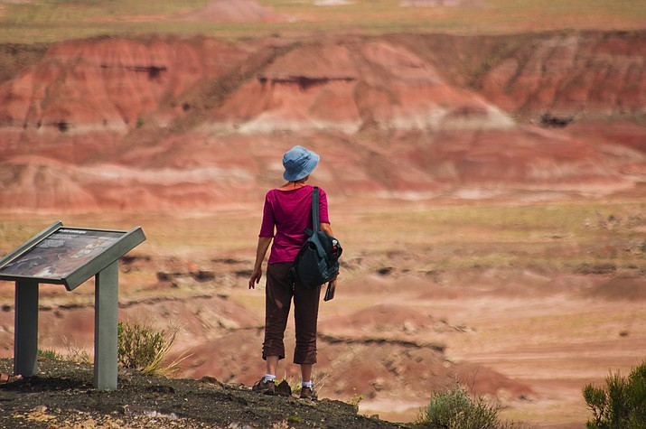 A visitor stops at the Petrified Forest National Park, one of many national and local sites in Arizona that have benefited from the Land and Water Conservation Fund over the years. (Photo courtesy National Park Service)