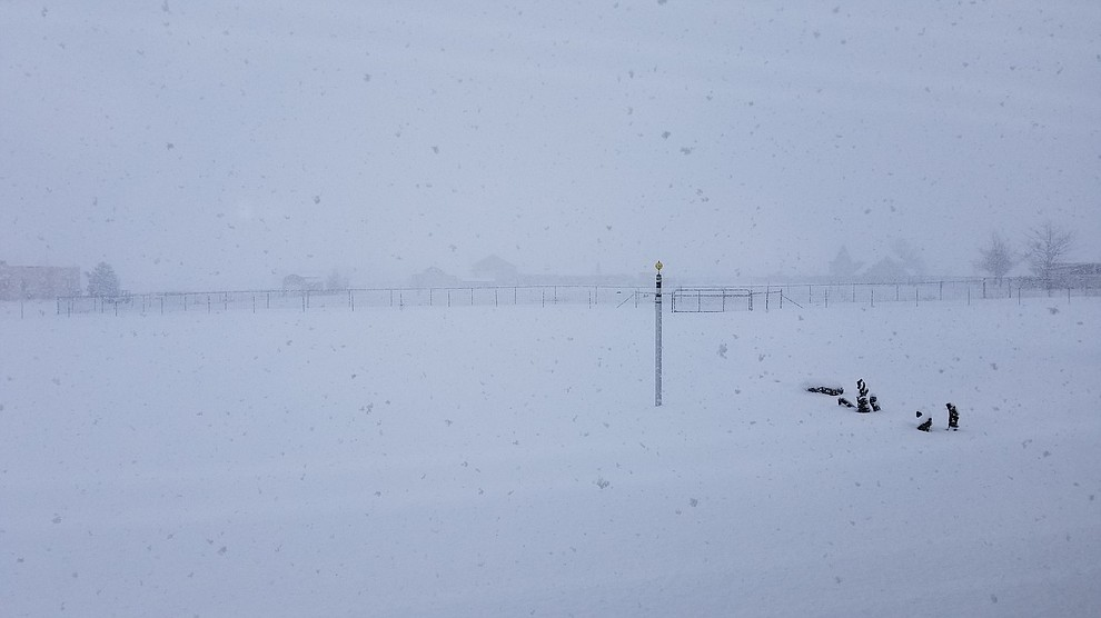 Near whiteout during heavy snowfall looking out over our back yard. (John Broughton)