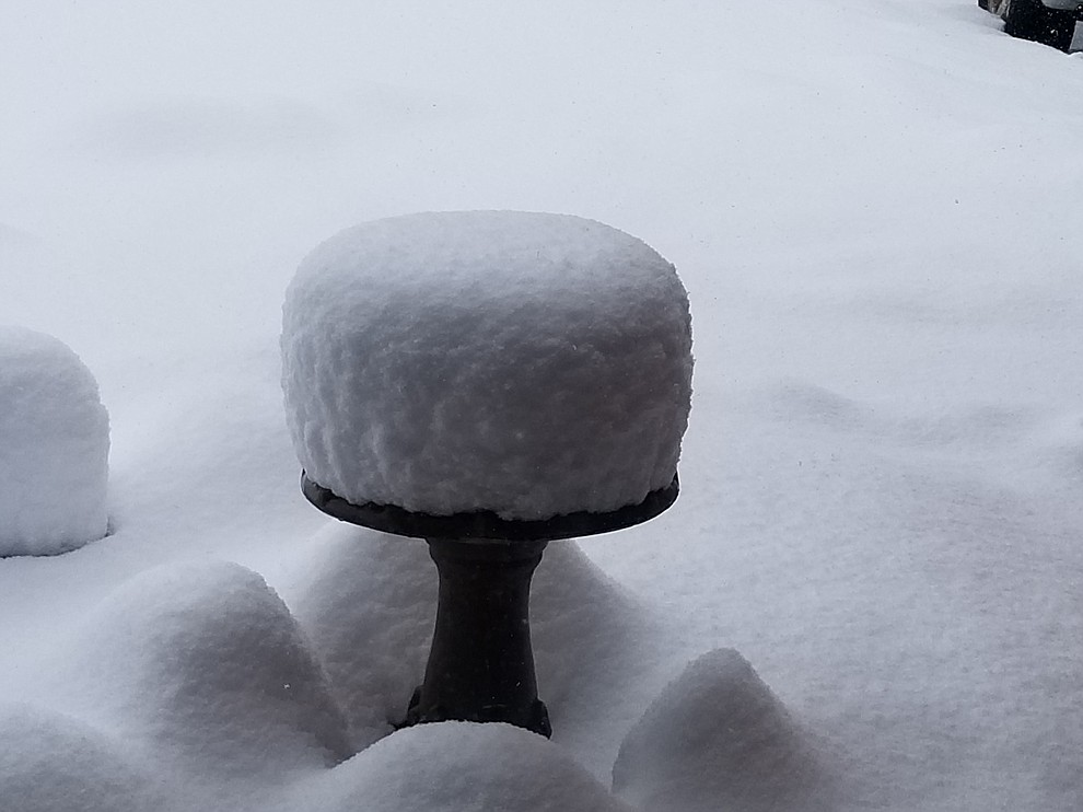 Birdbath in front yard looks like a nice cake. (Patrick Mannion)