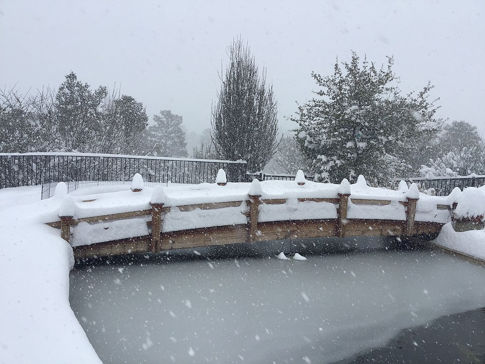 The bridge across our Koi Pond. Is covered in snow! The pond is starting to freeze. (Regina Shingledecker)