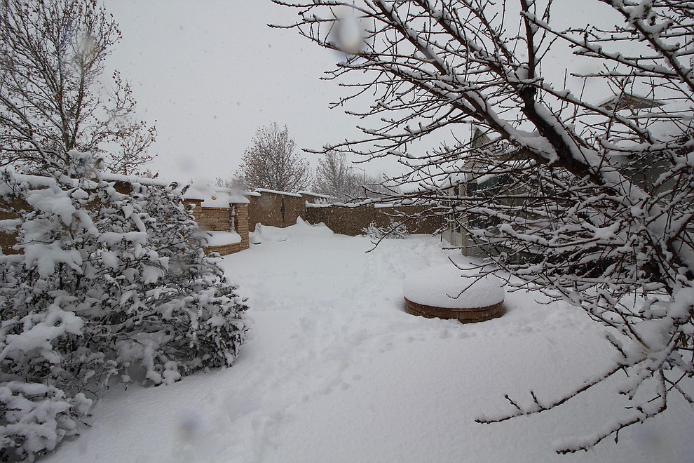 I just took this photo (2/21/19) in Prescott Valley, my home) at 12:26 p.m.