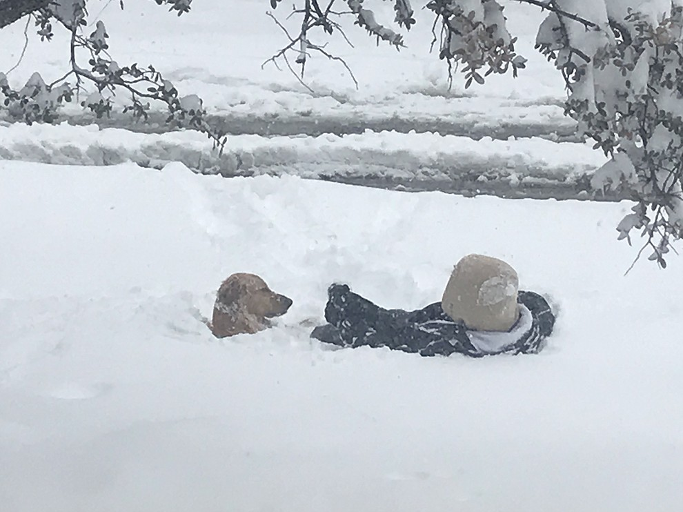 Snowstorm 2019 by Kathy Rhodes
