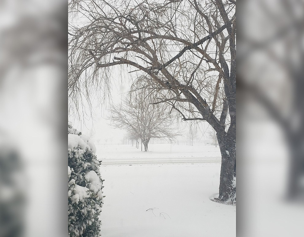 Prescott Valley snow picks. (Trisha Lash)