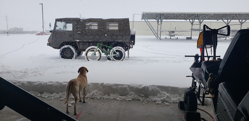 A Pinzgauer, a fat tire bike and Darby take in the 2.21.209 snow from a hanger at the Prescott airport. (Sean Jeralds)
