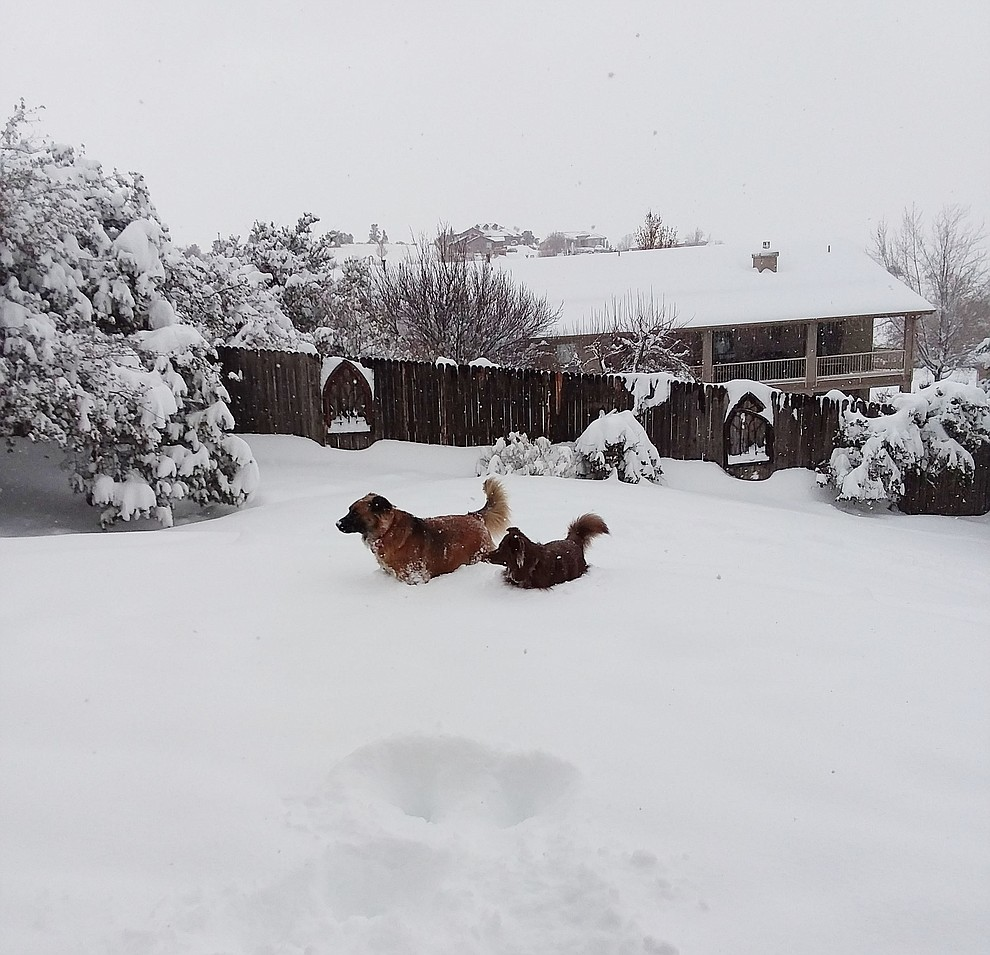 Willow.Armstrong and Jessie Armstrong playing away in the snow