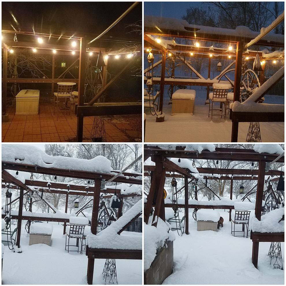 These pictures were taken from last evening to this afternoon.  .