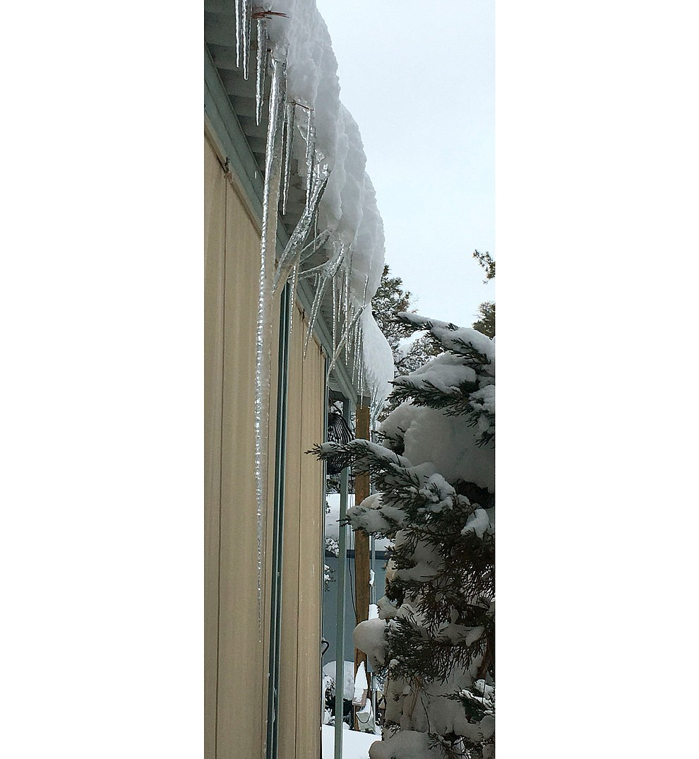 My record setting icicle. Icezilla