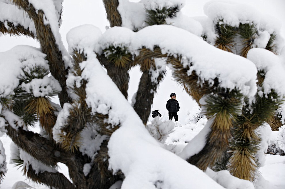 Framed by a Joshua tree, Nancy Knapp visits Red Rock National Conservation Area after a winter storm dropped several inches of snow, Thursday, Feb. 21, 2019, near Las Vegas. (AP Photo/John Locher)