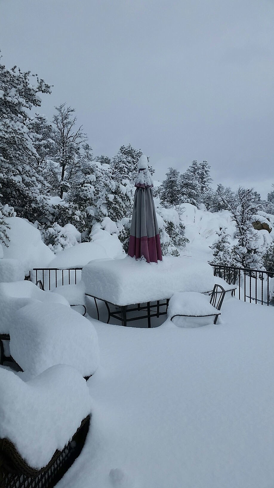 21 inches of snow on our deck this morning.