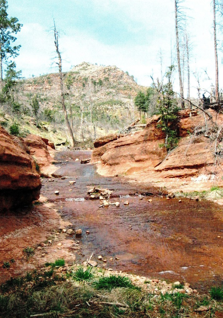 The High Line Trail along the base of the Mogollon Rim north of Payson would be a good choice for a first hike in Arizona. (Courtesy)