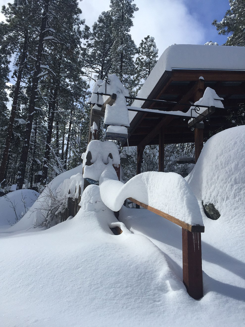 Snow wave on my neighbors banister
